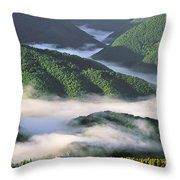 120520p233 Throw Pillow