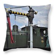 120520p306 Throw Pillow