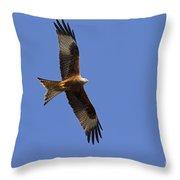 120520p327 Throw Pillow