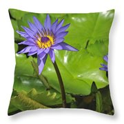 120715p199 Throw Pillow