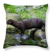 121213p013 Throw Pillow