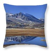 121213p099 Throw Pillow