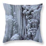 121213p157 Throw Pillow