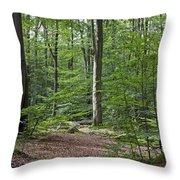 121213p305 Throw Pillow