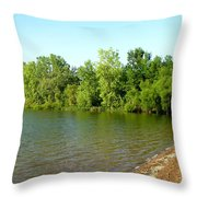 1234c Throw Pillow