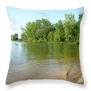 1242c Throw Pillow
