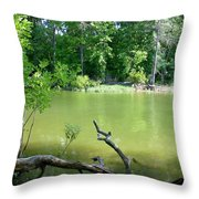 1246c1 Throw Pillow