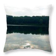 1257c Throw Pillow