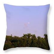 1275c1 Throw Pillow