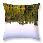 1276c Throw Pillow