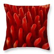 Intestinal Villi Throw Pillow