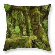 Olympic National Park Throw Pillow