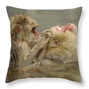 Snow Monkeys Throw Pillow