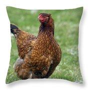130109p189 Throw Pillow