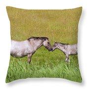 130201p027 Throw Pillow