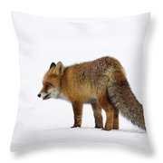 130201p056 Throw Pillow