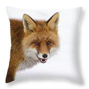 130201p058 Throw Pillow