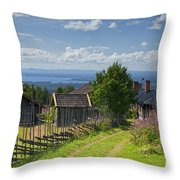 130201p098 Throw Pillow