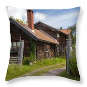 130201p100 Throw Pillow