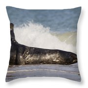 130201p126 Throw Pillow