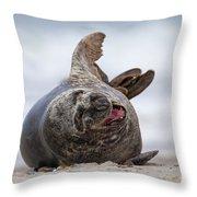 130201p148 Throw Pillow