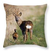 130201p187 Throw Pillow