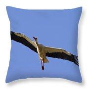 130201p265 Throw Pillow
