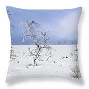 130201p330 Throw Pillow