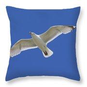 130215p213 Throw Pillow