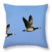 130215p250 Throw Pillow