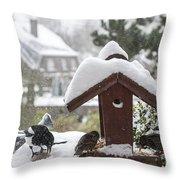 130215p304 Throw Pillow