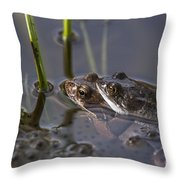 130318p140 Throw Pillow