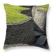 130918p128 Throw Pillow