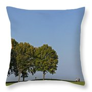 130918p135 Throw Pillow