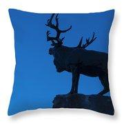 130918p145 Throw Pillow