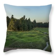 130918p146 Throw Pillow by Arterra Picture Library