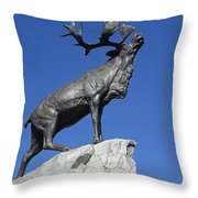 130918p150 Throw Pillow