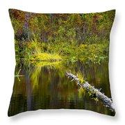 131005b-052 Forest Marsh 2 Throw Pillow