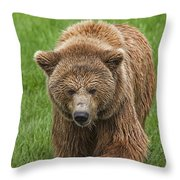 131018p213 Throw Pillow
