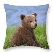 131018p225 Throw Pillow