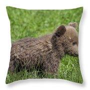 131018p227 Throw Pillow