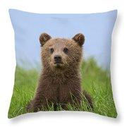131018p242 Throw Pillow