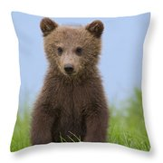 131018p243 Throw Pillow