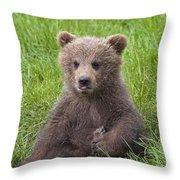 131018p247 Throw Pillow