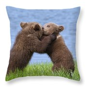 131018p256 Throw Pillow