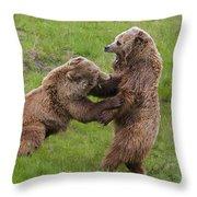 131018p263 Throw Pillow