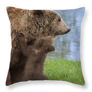 131018p277 Throw Pillow