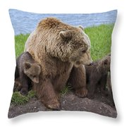131018p281 Throw Pillow