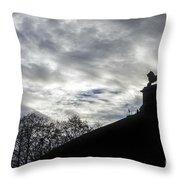 131018p340 Throw Pillow