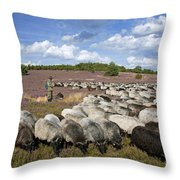 131114p162 Throw Pillow